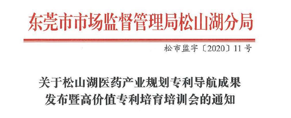 松山湖医药产业规划专利导航成果发布暨高价值专利培育培训会